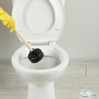 トイレの詰まり【大阪府羽曳野市】ラバーカップ(スッポン)で直らな...