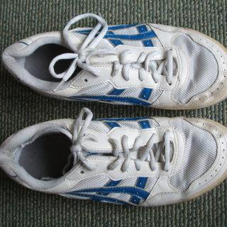 24.5cm運動靴