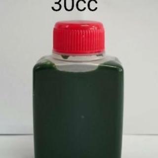 濃い生クロレラ水30cc