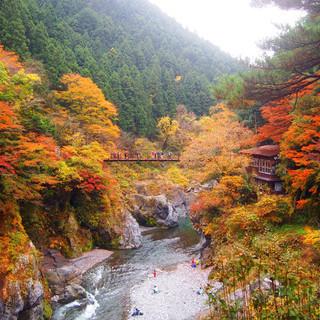 12月10日(12/10)  渓谷のせせらぎを聞きながら紅葉を楽...