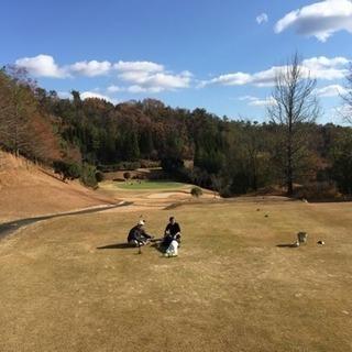 ゴルフ仲間募集 Let's golf!