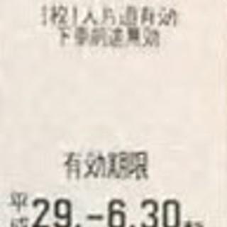 東武鉄道株主優待乗車券の2枚セットになります。