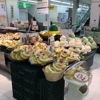 ◆年末まで大忙し!試食販売のスタッフ限定募集中!◆