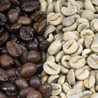 共同購入会 自家焙煎コーヒー スペシャルティーコーヒー