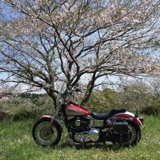 平日バイクツーリング行きませんか?