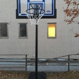 バスケットボール LIFETIME1513