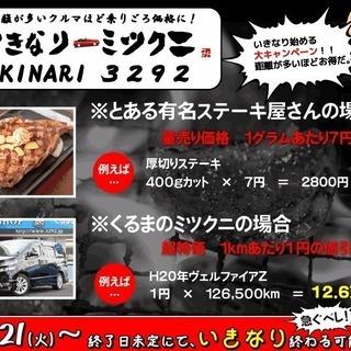くるまのミツクニ湘南店  自社ローン専門店