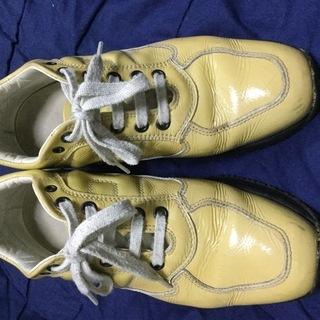 HOGANの靴