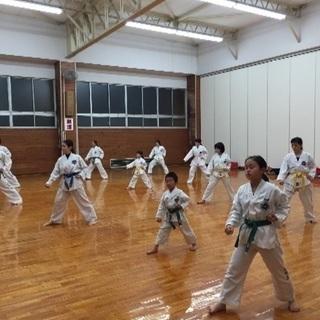 テコンドー宮崎道場 - スポーツ