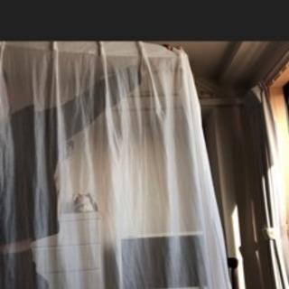 レイスカーテン