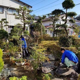 高知県内にて庭木剪定、草刈り等おまかせ下さい