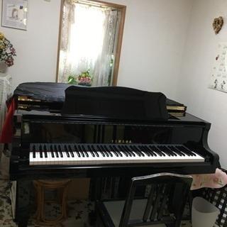 サウンドポケット東秋留音楽教室