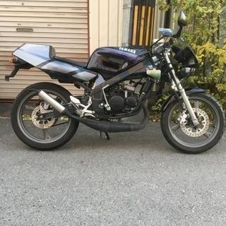 ヤマハ tzr50