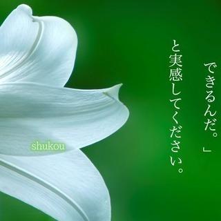 大阪 大正区で火葬式・家族葬・一般葬 町の葬儀屋さん 心