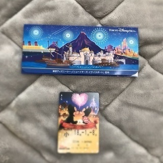 東京ディズニー 年越しリゾートラインチケット 小人