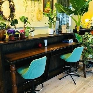 植物と珈琲の店 SPROUT