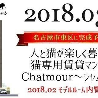 猫専用賃貸マンション:Chatmour(シャムール)-名古屋市東区