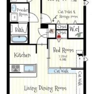 猫専用賃貸マンション:Chatmour(シャムール)-名古屋市東区 - 賃貸(マンション/一戸建て)