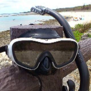 レッツダイビング!Scuba & Snorkeling 彩AYA