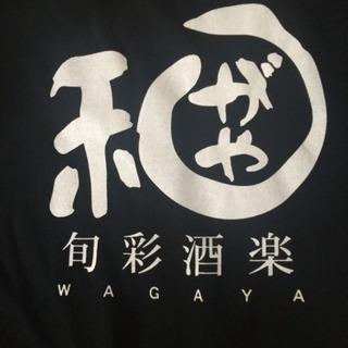 ホール、キッチンスタッフ急募!!の画像