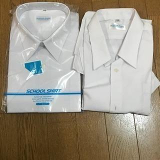 学生シャツ 半袖 155B