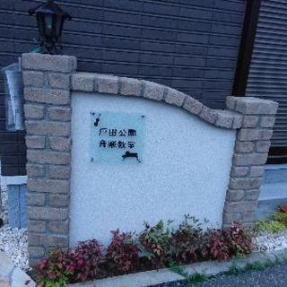 戸田公園音楽教室☆リトミック+プレピアノ開講!(ピアノ、ヴァイオ...