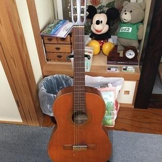 緊急値下げ!鈴木バイオリン ガットギター