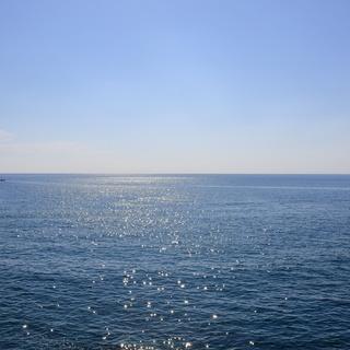 高知の海洋散骨は龍馬セレモニー|高知の地元事業者で安心