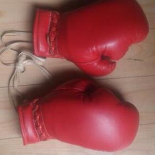 ボクシンググローブ(子供用)