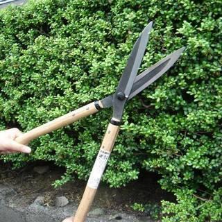 庭木の剪定・切り倒し 承ります