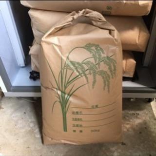 コシヒカリ玄米30キロ新米 令和2年千葉県産 農家自家保有米