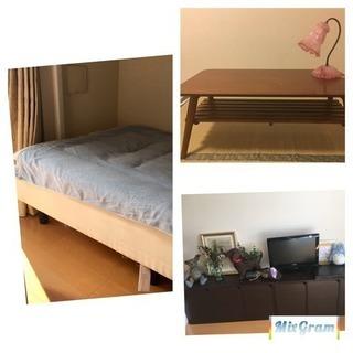 単身 家具セット 女性用 カラーボックス  ベッド テーブル