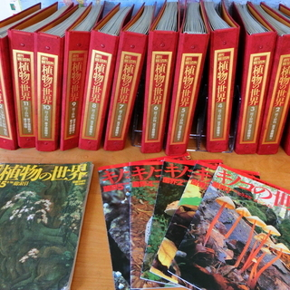 【値下げしました】週刊朝日百科 植物の世界・キノコの世界