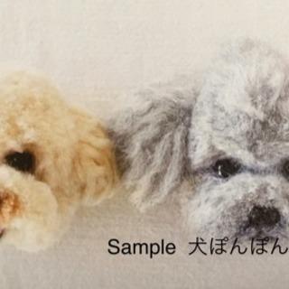 1/16簡単!初めてのタティングレース&犬ぽんぽん