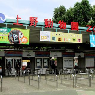 2月10日(2/10)  上野動物園に人気のパンダを見に行こう!動...
