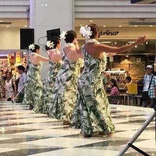 池袋・板橋区のフラ・タヒチアンダンス教室 Pualani's Hula&OriTahiti 大山クラス ☆ 初めての方からショーダンサー志望の経験者さんまで大歓迎です! − 東京都