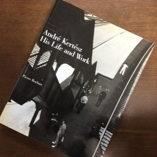 Andre Kertesz: His Life and Work ...