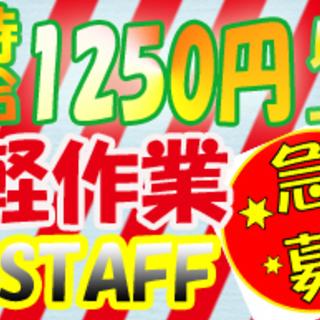 +*★総額50万円キャンペーン実施中!!!★+* 【電子部品製...
