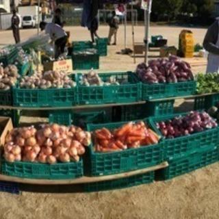野菜、果物販売イベント承ります!!