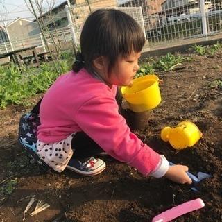 ご自宅に花壇、菜園スペース、砂場いかがですか?