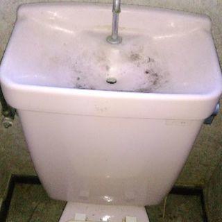 激安水回りお掃除‼