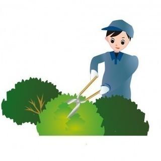 お仕事の手伝いしていただけるかた募集(女性歓迎)時間給は季節や内...