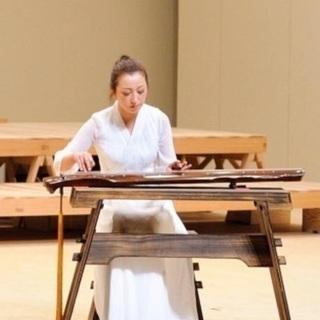 中国琵琶 古筝 古琴