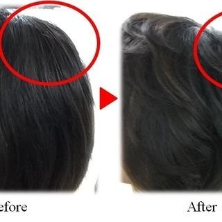 髪がすぐに増やせる!増毛講習