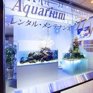 創業20年以上の信頼と実績・業界唯一の全国展開 観賞魚水槽レンタ...