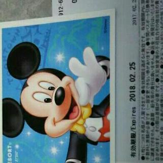 TDL★ディズニーランド・シー★入場パスポート★2枚★@5500円!