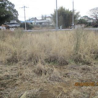 福岡売り地の草刈