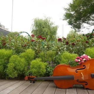 【出張レッスン】チェロ・合奏・楽典【私にジャズ・ドラム・英語教えて...