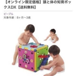 頭と体の知育ボックス
