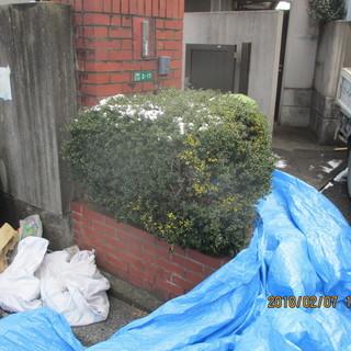 福岡不用品便利屋植え込みレンガの徹去作業
